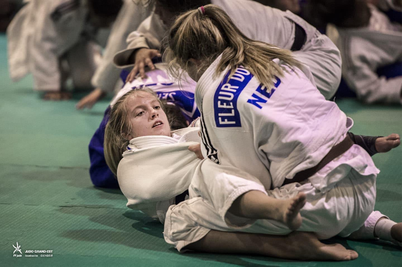 Stage « multifrontières » 2016 - Ligue Grand Est de Judo et ...