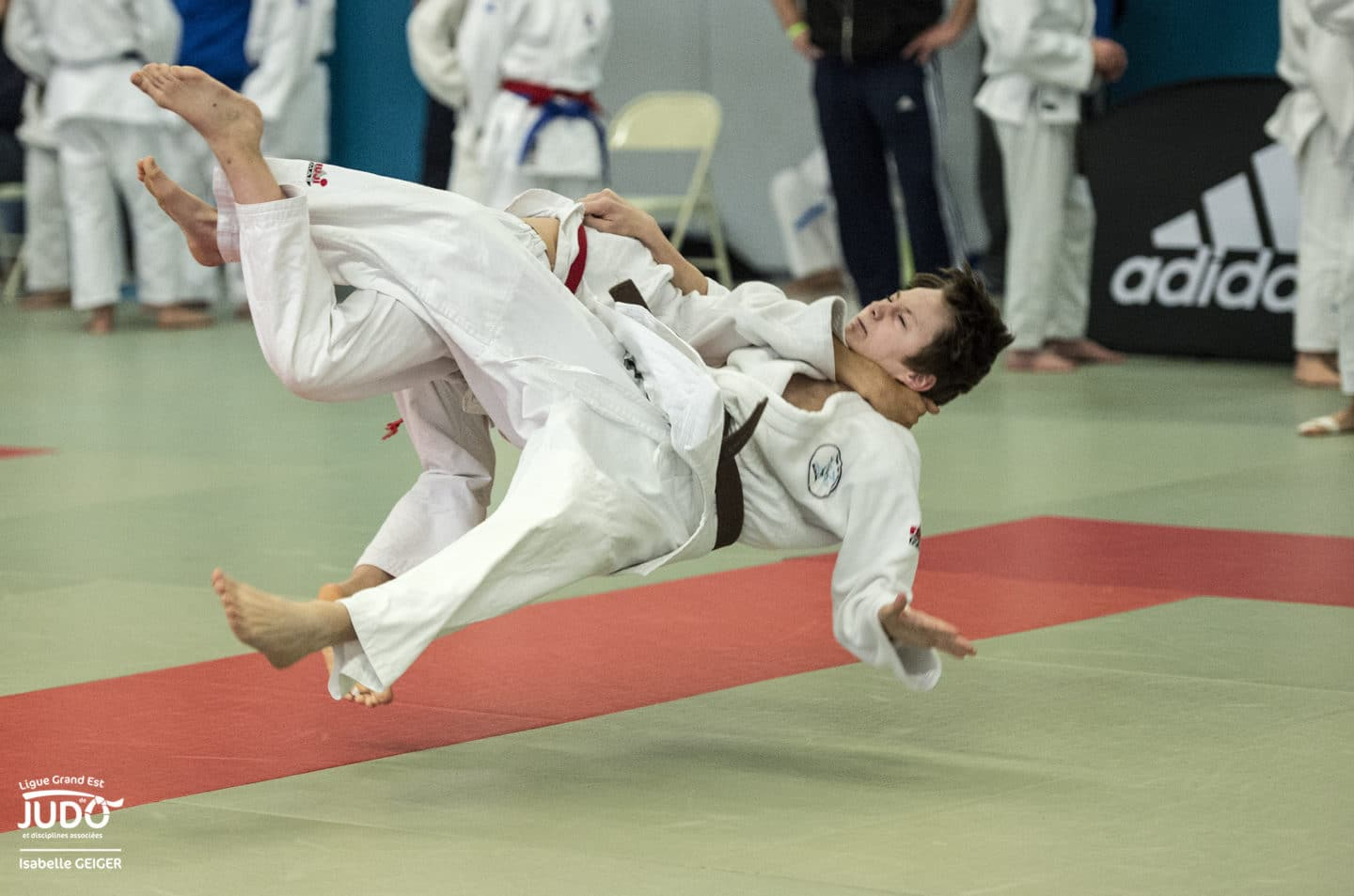 Calendrier Judo 2020.Coupe Grand Est Minimes Ligue Grand Est De Judo Et