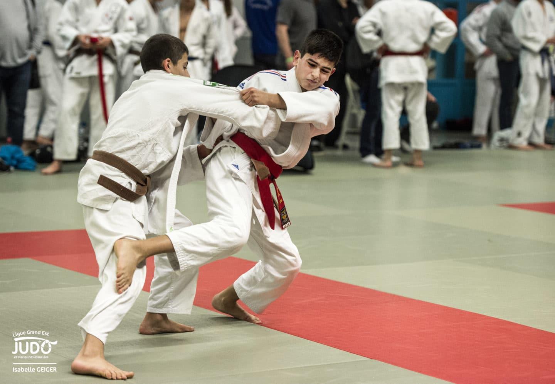 karate performance amp competition technique tactique physique mental