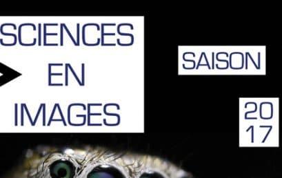 Conférence Sciences & Sport de Haut-Niveau