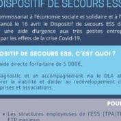 DISPOSITIF DE SECOURS AUX ASSOCIATIONS ESS
